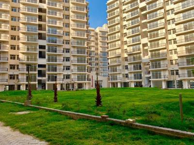 Gallery Cover Image of 570 Sq.ft 1 BHK Apartment for buy in AVL 36 Gurgaon, Sector 36A for 1897000