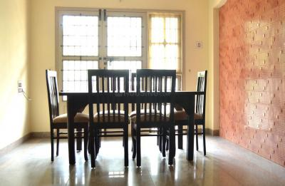 Dining Room Image of PG 4642049 Marathahalli in Marathahalli