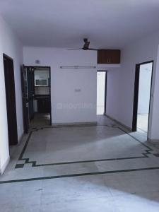 Gallery Cover Image of 1600 Sq.ft 3 BHK Apartment for rent in AWHO Vivek Vihar, Sector 82 for 14000