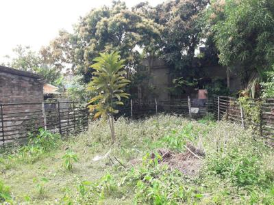 1800 Sq.ft Residential Plot for Sale in Serampore, Hooghly