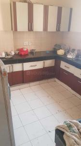 Kitchen Image of PG 4272147 Vasundhara in Vasundhara