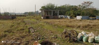 Gallery Cover Image of 720 Sq.ft Residential Plot for buy in Thakurpukur for 130000