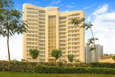 Gallery Cover Image of 1572 Sq.ft 3 BHK Apartment for buy in BPTP Discovery Park, Sector 80 for 5600000