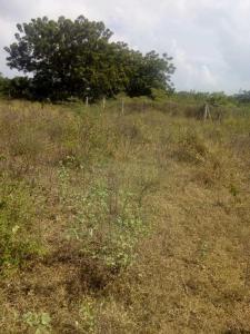 5000 Sq.ft Residential Plot for Sale in Namburu, Guntur