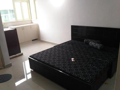 Gallery Cover Image of 300 Sq.ft 1 RK Apartment for rent in Sector 49 for 8500