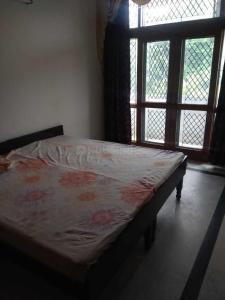 Bedroom Image of PG 4314590 Eta 1 Greater Noida in Delta I Greater Noida
