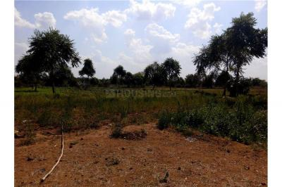 Gallery Cover Image of  Sq.ft Residential Plot for buy in Ghuma for 9000000