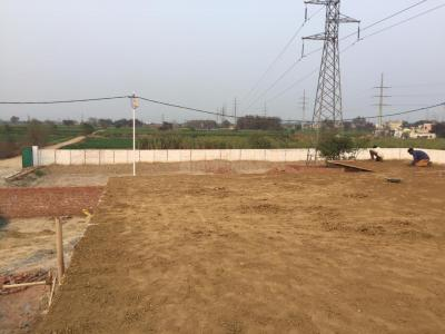 Gallery Cover Image of 450 Sq.ft Residential Plot for buy in Sanjay Nagar for 750000
