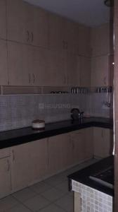 Kitchen Image of Best PG in DLF Phase 2