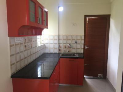 Gallery Cover Image of 800 Sq.ft 2 BHK Apartment for rent in Electronic City for 12500