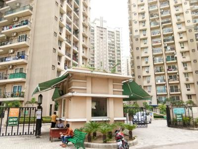 Gallery Cover Image of 1365 Sq.ft 3 BHK Apartment for rent in Ahinsa Khand for 24000