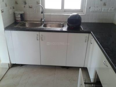 Gallery Cover Image of 1350 Sq.ft 3 BHK Apartment for rent in Omega II Greater Noida for 11000