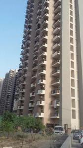 Gallery Cover Image of 610 Sq.ft 1 BHK Apartment for rent in Sector 75 for 14000