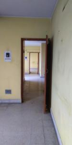 Gallery Cover Image of 965 Sq.ft 2 BHK Apartment for rent in Rukanpura for 9000