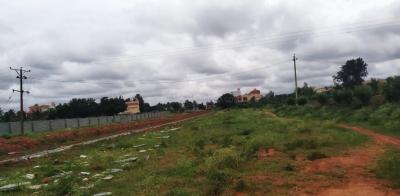 1900 Sq.ft Residential Plot for Sale in Lalbagh, Patna