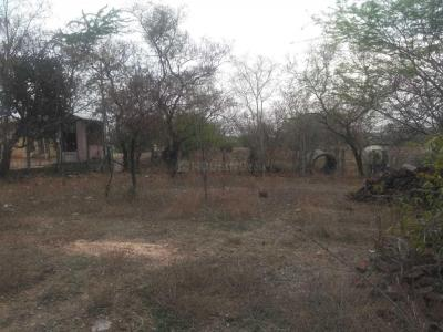 Gallery Cover Image of  Sq.ft Residential Plot for buy in Lakkapuram for 1440000