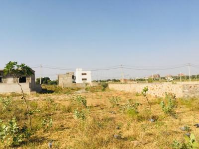 217 Sq.ft Residential Plot for Sale in Durgapura, Jaipur