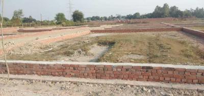 1500 Sq.ft Residential Plot for Sale in Vijay Nagar, Indore