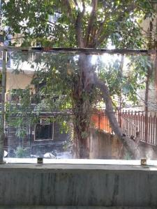 Balcony Image of Many Options Available in Karol Bagh