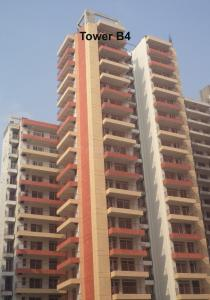 Gallery Cover Image of 1387 Sq.ft 2 BHK Apartment for rent in Sector 77 for 9000