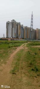 900 Sq.ft Residential Plot for Sale in Sector 67, Gurgaon