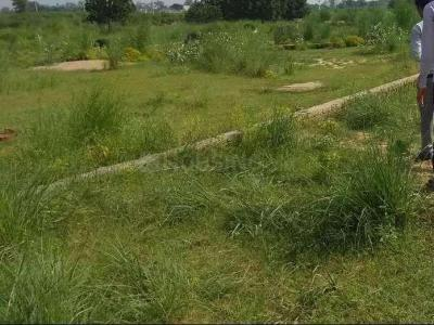 Gallery Cover Image of  Sq.ft Residential Plot for buy in Naini for 350000