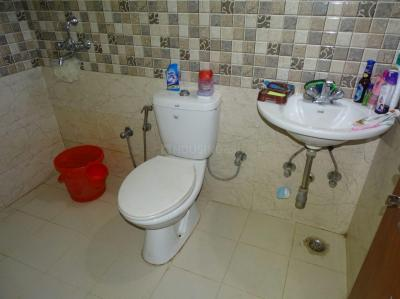 Bathroom Image of PG 4442174 Sector 49 in Sector 49