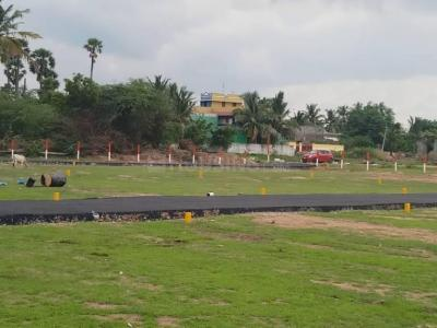 Gallery Cover Image of  Sq.ft Residential Plot for buy in Thirunindravur for 1458000