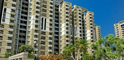 Gallery Cover Image of 1133 Sq.ft 2 BHK Apartment for buy in Neharpar Faridabad for 3600000