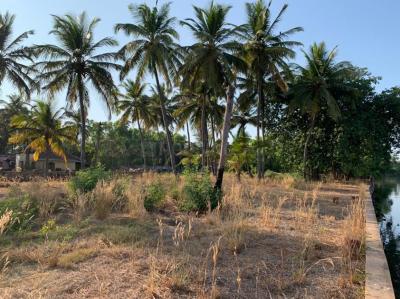 300 Sq.ft Residential Plot for Sale in Sancoale, Goa