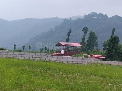 Gallery Cover Image of 900 Sq.ft Residential Plot for buy in Garhi Cantt for 4500000