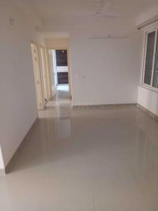 Gallery Cover Image of 885 Sq.ft 2 BHK Apartment for rent in Noida Extension for 9500