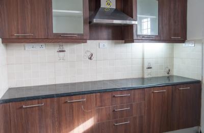 Kitchen Image of PG 4642989 Mahadevapura in Mahadevapura