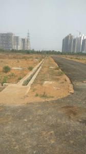 Gallery Cover Image of 300 Sq.ft Residential Plot for buy in Anant Raj Estate Plots, Sector 63 for 19800000