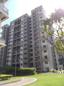 Gallery Cover Image of 1200 Sq.ft 2 BHK Apartment for rent in Sobha Orion Block 3, Kondhwa for 18000