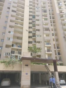 Gallery Cover Image of 1000 Sq.ft 2 BHK Apartment for rent in Sector 137 for 12000