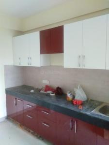 Gallery Cover Image of 1380 Sq.ft 3 BHK Apartment for rent in Raj Nagar Extension for 11000