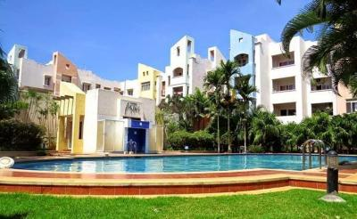 Gallery Cover Image of 1251 Sq.ft 2 BHK Apartment for rent in Whitefield for 29000