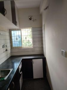 Gallery Cover Image of 600 Sq.ft 2 BHK Apartment for rent in Doddakannelli for 14500