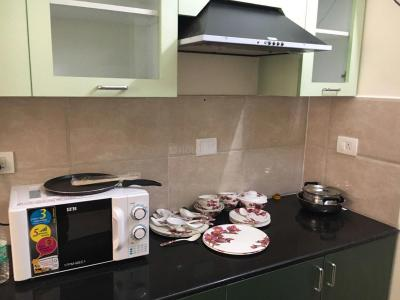 Kitchen Image of Zolo Millennium in Sholinganallur