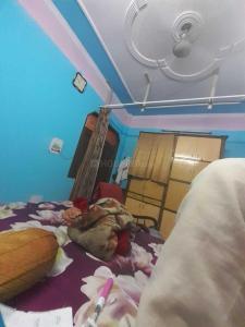 Bedroom Image of Niglani PG House in Shahdara