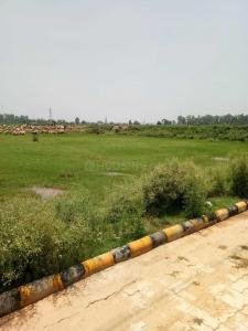 900 Sq.ft Residential Plot for Sale in Panchkula Extension, Panchkula