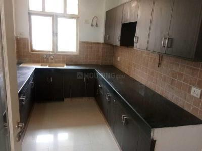 Gallery Cover Image of 1800 Sq.ft 3 BHK Apartment for rent in Sector 52 for 25000