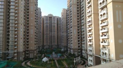 Gallery Cover Image of 1725 Sq.ft 3 BHK Apartment for buy in Purvanchal Royal City, Chi V Greater Noida for 6800000
