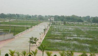 4500 Sq.ft Residential Plot for Sale in Sector 1 Sohna, Gurgaon