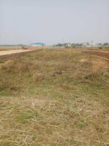 Gallery Cover Image of  Sq.ft Residential Plot for buy in Industrial Estate Khapuria for 1260000