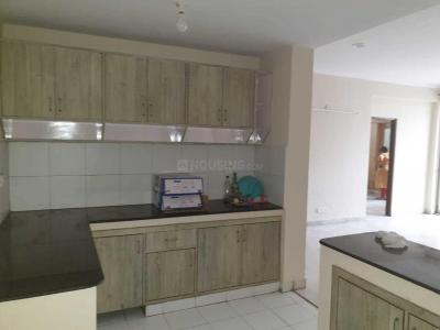 Gallery Cover Image of 2456 Sq.ft 3 BHK Apartment for rent in Alpha II Greater Noida for 18000