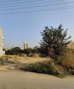 342 Sq.ft Residential Plot for Sale in Sector 51, Gurgaon