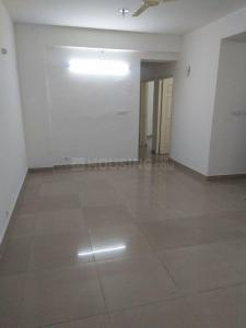 Gallery Cover Image of 1135 Sq.ft 2 BHK Apartment for rent in Sector 77 for 17500