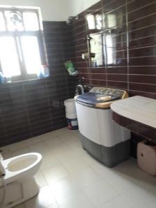 Common Bathroom Image of Rat in Sector 41